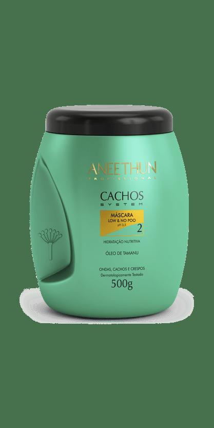 Aneethun Cachos System Máscara Low e No Poo  -500g
