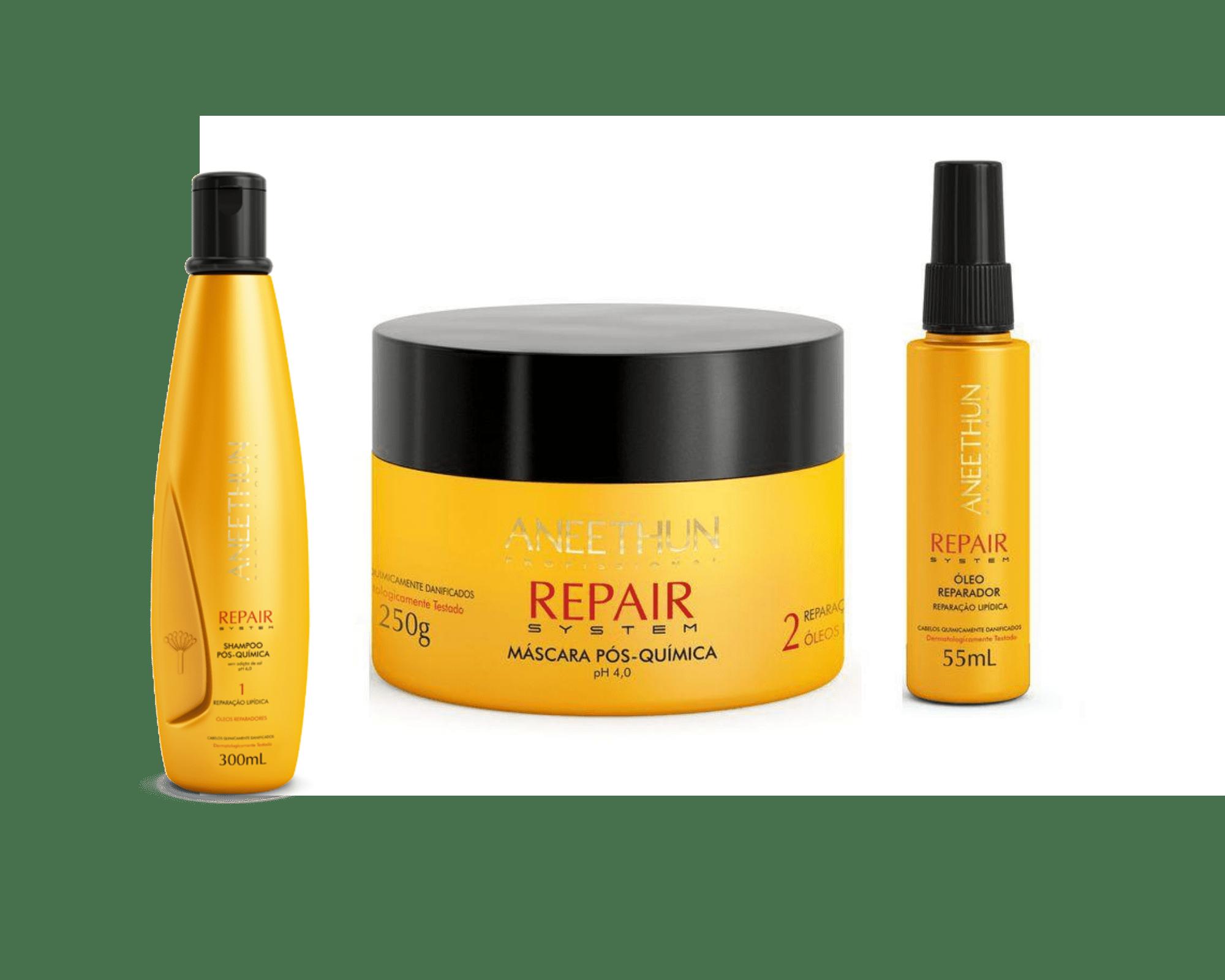 Aneethun Kit Repair System Shampoo 300 ml + Máscara 250 g + Óleo Reparador 55 ml