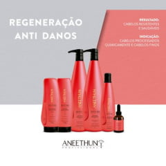 Aneethun Kit Restore Anti Danos Sh300ml+ Másc250g+ Finali250g